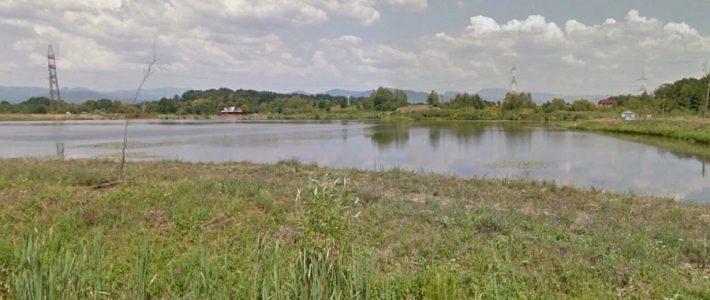 """Plan investitional in Recea: Repopulare cu 4 tone de peste la Balta """"Doua Veverite"""" din Lapusel"""