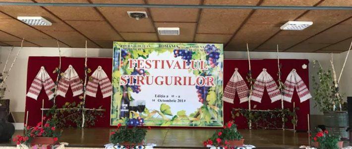 Festivalul Strugurilor Sasar